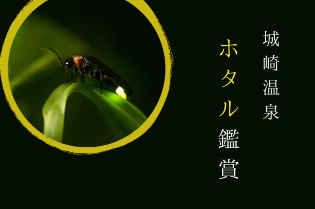 城崎温泉ホタル鑑賞