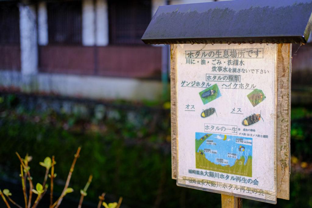 ホタル鑑賞マナー